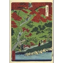 一景: Forty-Eight Famous Views of Tokyo: Maple Trees at Kaian-ji Temple - 江戸東京博物館