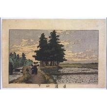 Inoue Yasuji: True Pictures of Famous Places in Tokyo: Below Dokanyama Hill - Edo Tokyo Museum