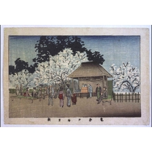 Inoue Yasuji: True Pictures of Famous Places in Tokyo: Ume (Japanese apricot) Garden at Kameido - Edo Tokyo Museum