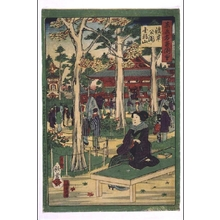 歌川国利: Collected Illustrations of Famous Places in Tokyo: Asakusa Park and Kinryuzan Temple - 江戸東京博物館