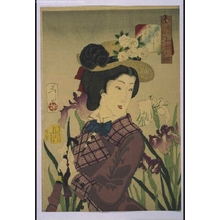 月岡芳年: Thirty-Two Daily Scenes: 'Looks Like she Wants a Stroll' Mannerisms of a Housewife in the Meiji Period - 江戸東京博物館