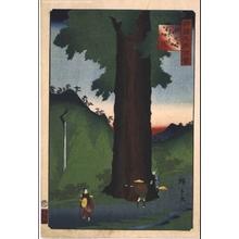 Utagawa Hiroshige II: One Hundred Views of Famous Places in the Provinces: Yatate-matsu Cedar, Koshu - Edo Tokyo Museum