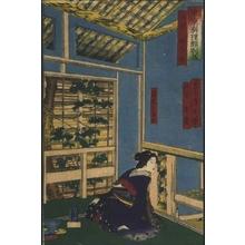 Tsukioka Yoshitoshi: Gourmet Delights in Tokyo: The Kinoeneya in Asakusa - Edo Tokyo Museum