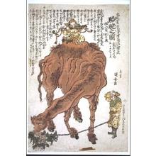 Utagawa Kuniyasu: A Camel - Edo Tokyo Museum