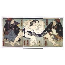 Utagawa Kunisada II: Sumo: Sakahoko Wrestles Shushakayama - Edo Tokyo Museum