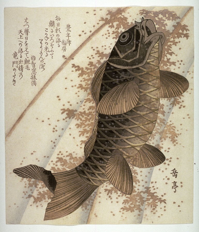 Yashima Gakutei Carp Ascending A Waterfall From An Untitled Series Of Copies Of Square