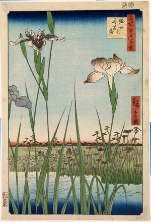 歌川広重: Irises at Horikiri (Horikiri no hana sh?bu), no. 56 from the series One Hundred Views of Famous Places in Edo (Meisho Edo hyakkei) - Legion of Honor