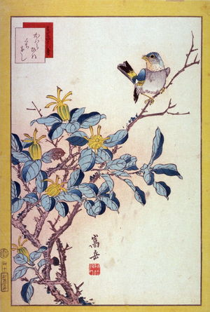 Nakayama Sugakudo: River Sparrow and Kuchinashi Flowers (Kawara hiwa kuchinashi ),No. 40 from the series Forty-eight Birds Drawn from Life (Ikiutsushi yonjuhachiyo) - Legion of Honor