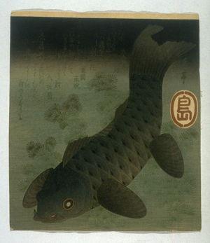 屋島岳亭: Carp Swimming Among Water Weeds - Legion of Honor