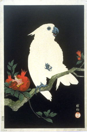 Shoson Ohara: Parrot and Pomegranate - Legion of Honor