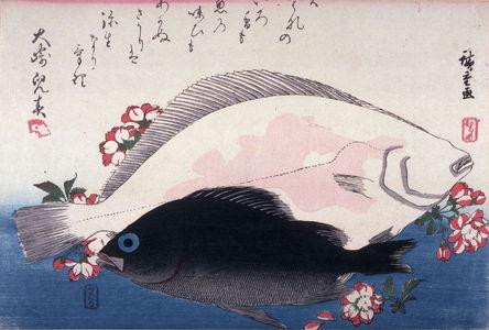 歌川広重: Untitled (Mebaru, Hirame, Cherry Blossoms), one from a series of large fish - Legion of Honor