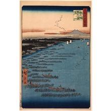 歌川広重: The Samezu Coast in South Shinagawa (Minami Shinagawa Samezu kaigan), no. 109 from the series One Hundred Views of Famous Places in Edo (Meisho Edo hyakkei) - Legion of Honor