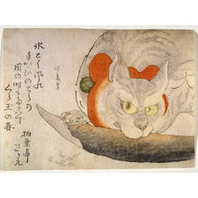 蹄斎北馬: A Cat with a Red Silk Ribbon Eating a Piece of Fish - Legion of Honor