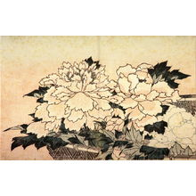 Katsushika Hokusai: [Flowers] - Legion of Honor