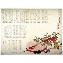 Matsubawa Yasunobu: Lute and Yamabuki Flowers - Legion of Honor