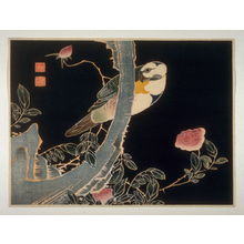 Unknown: Parrot and Rose - Legion of Honor