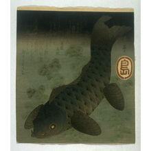 Yashima Gakutei: Carp Swimming Among Water Weeds - Legion of Honor