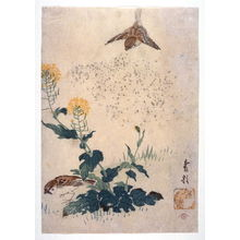 Kasai: Sparrows and Na Flowers - Legion of Honor