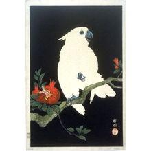 Shoson Ohara: Parrot and Pomegranate - Legion of Honor