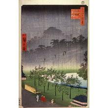 二歌川広重: Night Rain at the Paulownia Grove at Akasaka (Akasaka kiribatake uchu yukei), no. 48a from the series One Hundred Views of Famous Places in Edo (Meisho edo hyakkei) - Legion of Honor