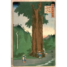 二歌川広重: Yatate Cryptomeria Tree in Kai Province (Koshu yatate sugi), from the series One Hundred Famous Places in the Provinces (Shokoku meisho hyakkei) - Legion of Honor