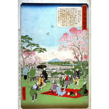 Utagawa Hiroshige III: Flower Viewing at Asuka Hill (Asukayama hanami) from a series Famous Spots in Edo - Legion of Honor