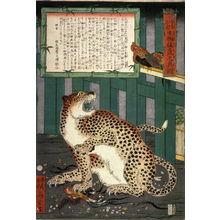 Kawanabe Ky?sai: A True Picture of the Fierce Live Tiger Never Seen from the Past to the Present (Konjaku miken shobutsu moko no shin zu) - Legion of Honor