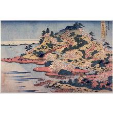 葛飾北斎: Mt. Tempo at the Mouth of the Aji River in Settsu P{rovince (Sesshu aji kawaguchi tempozan), from the series Unusual Views of Famous Bridges in the Province (Shokoku meikyo kiran) - Legion of Honor
