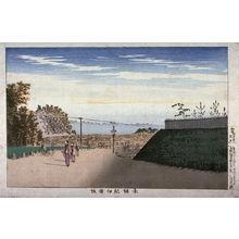 小林清親: The Kiinokuni shops at Akasaka (Akasaka Kiinokunizaka) from an untitled series of views of Tokyo - Legion of Honor