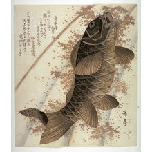 Yashima Gakutei: Carp Ascending a Waterfall, from an untitled series of copies of square surimono - Legion of Honor