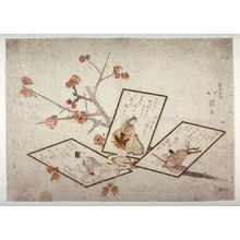 魚屋北渓: Untitled [Plum Branch and Three Poem Cards] - Legion of Honor