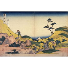 Katsushika Hokusai: Fuji from Lower Meguro, from the series Thirty-Six Views of Mount Fuji - Legion of Honor