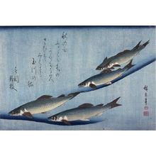 歌川広重: Untitled (Five Swimming Ayu),one of ten from an untitled series of fish - Legion of Honor