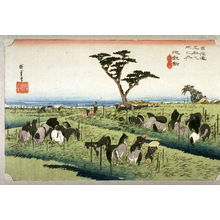歌川広重: Summer Horse Market at Chiryu (Chiryu shuka umaichi), no. 40 from the series Fifty-three Stations of the Tokaido (Tokaido gosantsugi no uchi) - Legion of Honor