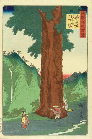 二歌川広重: Yatate Pine tree Kai Province, from - 原書房