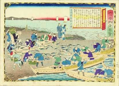 Utagawa Hiroshige III: Bonito in Tosa Province, from - Hara Shobō