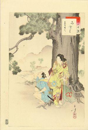 Mizuno Toshikata: - Hara Shobō