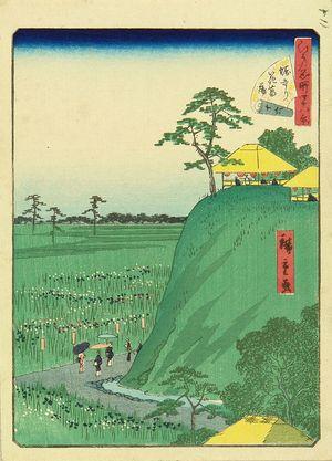 二歌川広重: Iris garden at Horikiri, from - 原書房