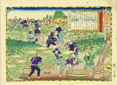 Utagawa Hiroshige III: Digging arrowroot, Yamato Province, from - Hara Shobō