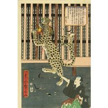 Utagawa Hirokage: An exhibition of a tiger, 1860 - Hara Shobō