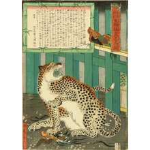 河鍋暁斎: A picture of a tiger, 1860 - 原書房
