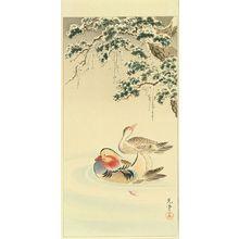 Tsuchiya Koitsu: A pair of mandarin ducks, c.1935 - Hara Shobō