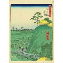 Utagawa Hiroshige II: Iris garden at Horikiri, from - Hara Shobō