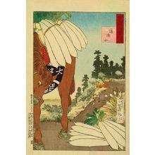 Kobayashi Kiyochika: Dokan Hill, from - Hara Shobō
