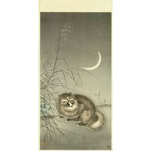 風光礼讃: Badger, 1930s - 原書房