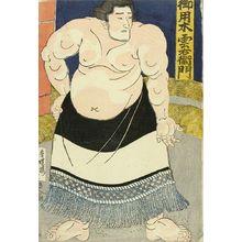 Utagawa Kunisada: A portrait of the sumo wrestler Goyogi Kumoemon, c.1843 - Hara Shobō