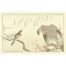 Unknown: 60,000 YEN - Hara Shobō