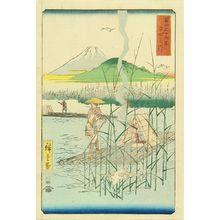 Utagawa Hiroshige: Sagami River, from - Hara Shobō