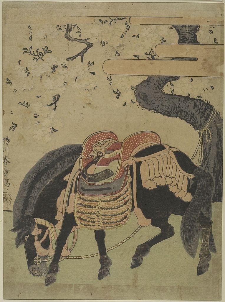 Edo period date edo period middle 1704 1789 details more information - Katsukawa Shunsho Black Horse Tethered Under A Blossoming