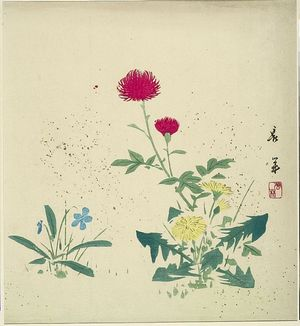 Hosoda Eishô: FLOWERS - ハーバード大学